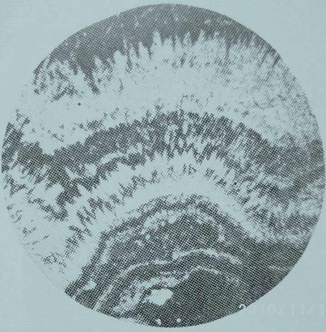 《岩石的微观世界》 科学普及长篇连载(十) 胡家燕 你知道在我们居住的地球上,脚下这片广袤的岩石大地上,它们的微观世界是什么模样? 请伴随这首贵州恋歌,细细的品味吧! 在地质科学领域中,是由无数门学科组成,岩石学是其中的一门基础学科。 在科学试验的征途中,我们始终遵循着宏观世界与微观世界的密切结合。 地球上岩石圈中,有三大类岩石,它们是沉积岩类、岩浆岩类、变质岩类。它们的每一种岩石,都有各自特定的矿物种类;都有各自的结构、构造。通俗一点,像人一样,每一种岩石也都有自已的长相 每一幅写真图片,