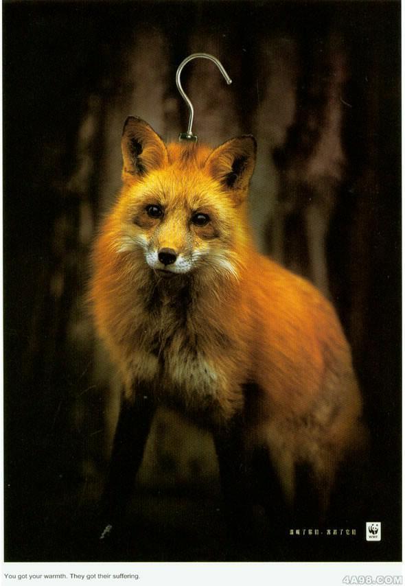 wwf保护动物公益广告-东珍公益艺术设计-我的搜狐