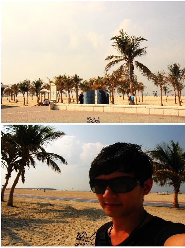 迪拜·沙漠中的海洋绿洲