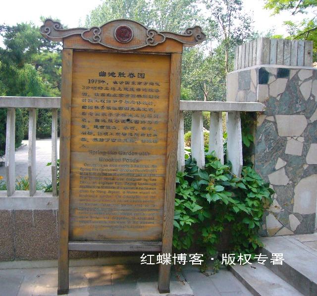 夏花 北京日坛公园12P