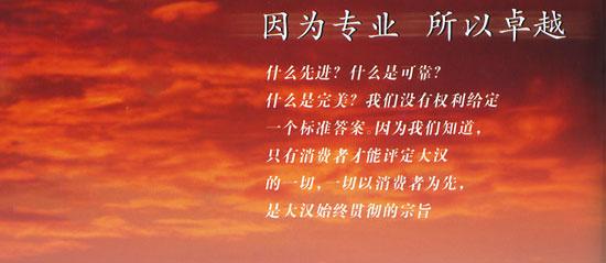 山东大汉塔机-山东大汉塔机-搜狐博客