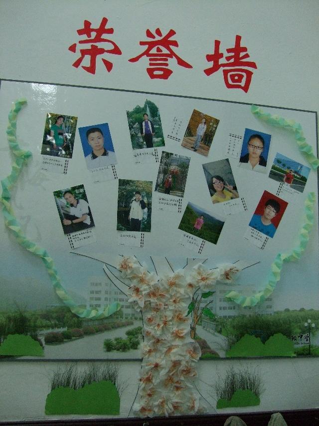 荣誉墙 图片