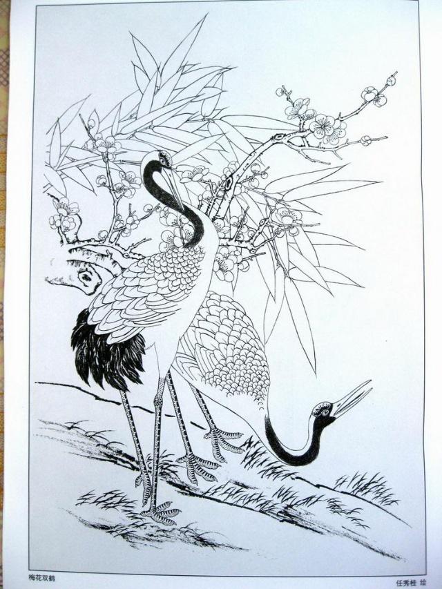 简笔画仙鹤的画法步骤