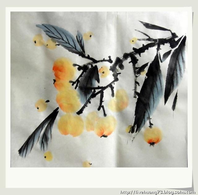 又是 枇杷 成熟时 学 国画 之 枇杷写意 水墨云上