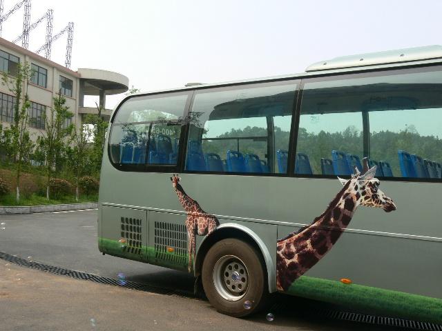 生态动物园(2)