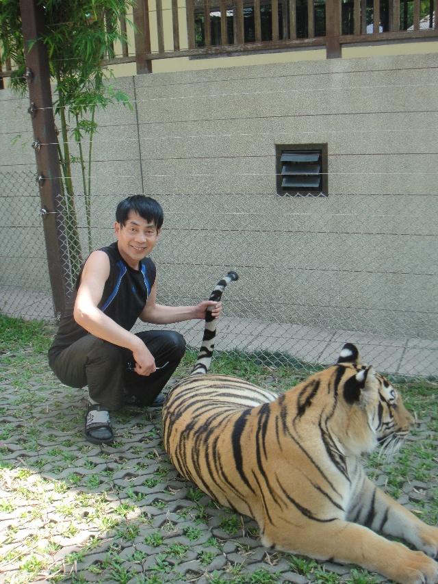 黎明:我和老虎,蟒蛇和谐相处